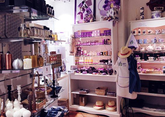 Violettes et Pastels