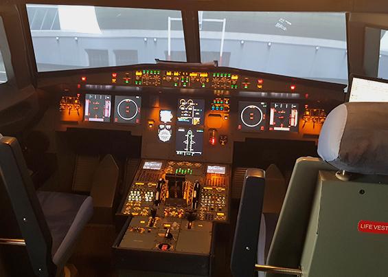 Fly simulation