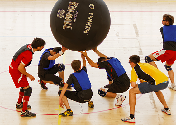 Toulouse Kin Ball Club